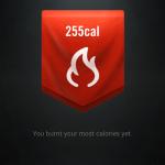 I burnt 255cal